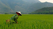 Vietnam Travel Guide: Planning The Ultimate Trip Through Vietnam - Departful