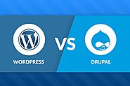 Is Drupal the David that brings down the Goliath of WordPress?