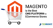 Is Magento the Best ECommerce CMS for Large ECommerce Portals
