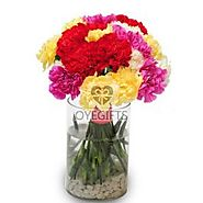 Order Sweet Carnations Online Same Day Delivery - OyeGifts.com