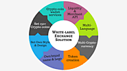 Whitelabeled Bitcoin and Cryptocurrency Exchange Script