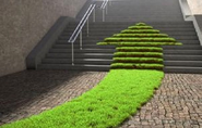 Room to Grow: A Look at the Changing Landscape of Green Startups
