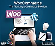 Pros and Cons of WooCommerce based eCommerce Solutions