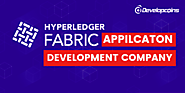 Hyperledger Fabric Apps Development Company - Developcoins