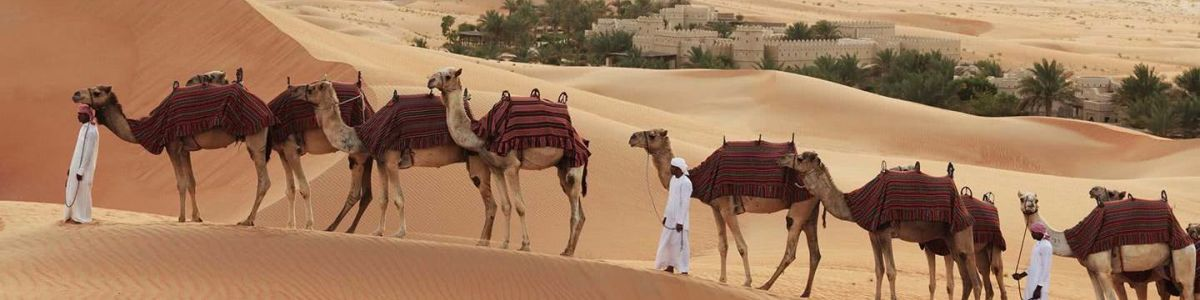Headline for What You Need to Know Before Riding a Camel – An Interesting Lesson