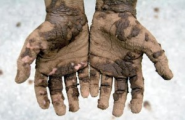 Get Your Hands Dirty !! | Everyday People