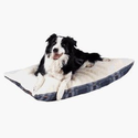 Ten Kinds of Dog Beds