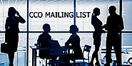 Chief Compliance Officer Email List