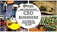 Merchant Account Approval for CBD Businesses