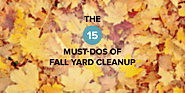 The 15 Must-Dos of Fall Yard Cleanup | SafeWise