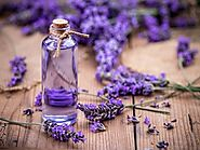Buy Lavender Essential Oil Online