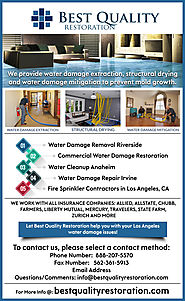 Best Water Damage Restoration Companies Near Me