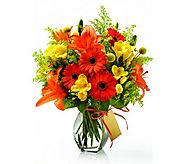 Find High Quality Funeral Flower Delivery In Ottawa