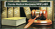 FLORIDA JUDGE RULES YOU CAN LEGALLY SMOKE FLORIDA MEDICAL MARIJUANA IN FLORIDA