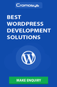 Hire Dedicated Wordpress Web Developer at Cromosys