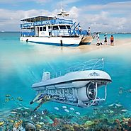 Seaworld Day Tour, Grand Cayman Day Tour, Seaworld Tour in Cayman,