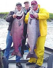 Alaskan Salmon Fishing Trips - Alaska Halibut Fishing Charter