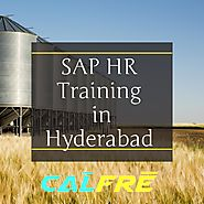 Become Expert in SAP HR Training in Hyderabad@ Get Job Early