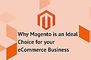 How Magento Can Help To Flourish Your Ecommerce Business