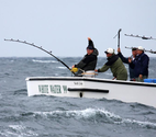 Bruce Brothers Fishing Charters