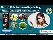 Repair Dry, Frizzy Damaged Hair Naturally by Herbal Hair Lotion
