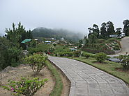 Kalimpong (Treasuries of orchids):