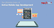 The Ultimate Perks of Native Mobile App Development | TechTIQ Solutions