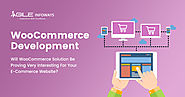 Custom WooCommerce eCommerce Website Development Company India, USA.