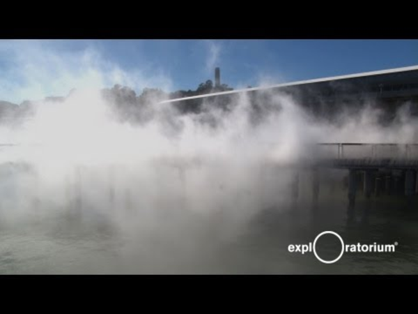 Experience the Exploratorium at Pier 15