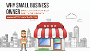 Why Small Business Owner Should Look for SEO for Their Growth – Nettechnocrats IT Services PVT. Ltd