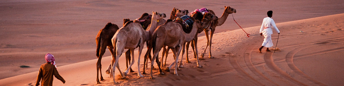 Headline for 06 Things You Need to Know Before Going on a Desert Trip – Tips For a Safe Journey
