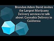 Largest Weed Delivery Services in the United States - Discuss Marijuana Delivery in California