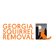 Get Experts Of Rodent Removal Atlanta