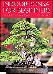 Indoor Bonsai for Beginners - Including Selection, Care and Trainning