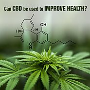 Can CBD be used to improve health? – CBD 555