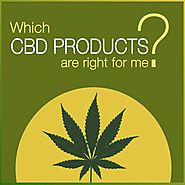 Which CBD Products are right for me? | CBD 555