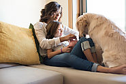 4 Smart Tips to Make Apartment Living with Your Dog Easier | Pet Insurance | New York City, USA | The Insured Pet