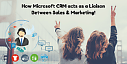 How Microsoft CRM acts as a Liaison Between Sales and Marketing