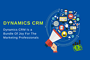 Dynamics CRM is a Bundle of Joy For The Marketing Professionals