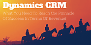 Dynamics CRM is What You Need to Reach The Pinnacle of Success In Terms Of Revenue!