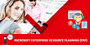 Meet the Family of Microsoft Enterprise Resource Planning (ERP)