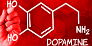 Top 8 Best Natural Dopamine Boosters - Dr Chuang