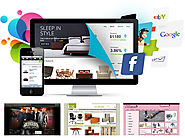 The Web Design Organization That Can Be Hired For Having Best of Customized Website