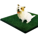 "PetZoom Pet Park Indoor Pet Potty, 25.5"" x 20"" x 2"""