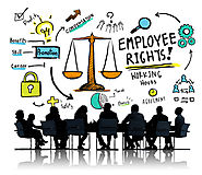 Independent Contractors or Employees: The Importance of Correctly Classifying Workers in Florida