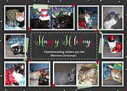The Twelve Cats of Christmas - http://15andmeowing.comhttp://15andmeowing.com