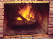 Fireplace Glass Doors - Wilshire Fireplace Shops CA