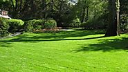 Organic Turf Management: All's well if Soil's well | GARDENS NURSERY
