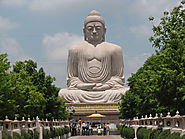 Check Out the Great Buddha Statue