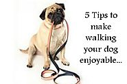 Walking Your Dog Should Be Enjoyable